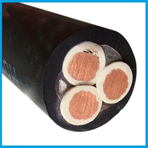 get 3PNCT-H 3 core 22mm 38mm 60mm cable price from supplier